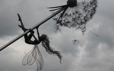 Comment les fées fabriquent-elles leurs ailes ?